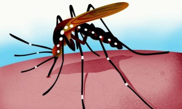 Movilización Nacional de Prevención contra la Chikungunya